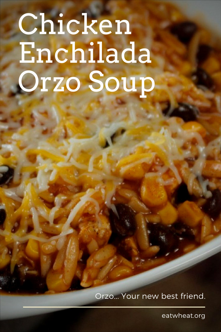 Chicken Enchilada Orzo Soup served in a bowl