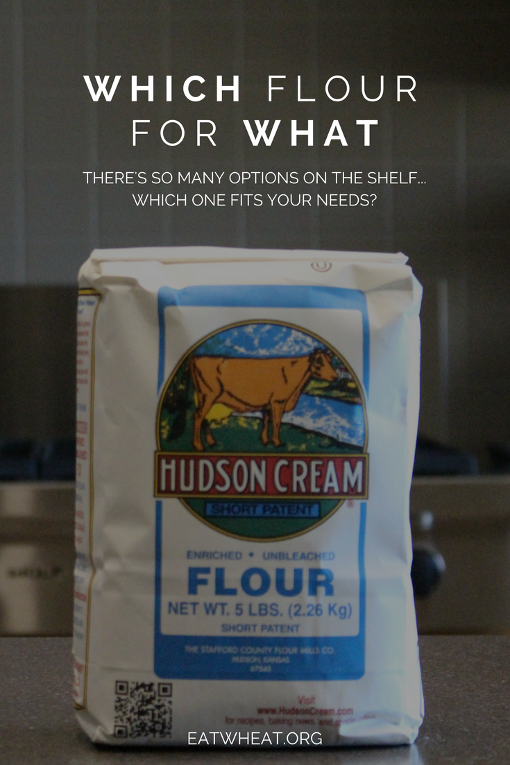 Whole wheat? Enriched flour? Which flour fits your needs the best?