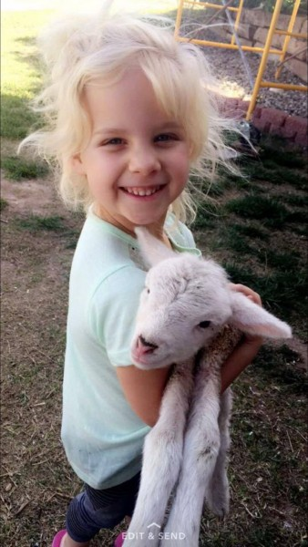 Paisley holding a baby lamb