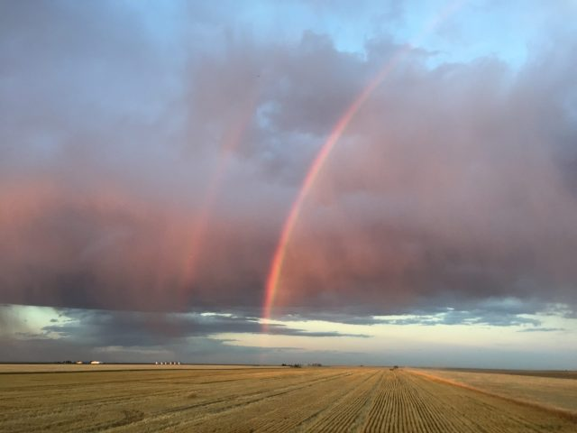 Rainbows arc over a cut wheat field in Colorado.