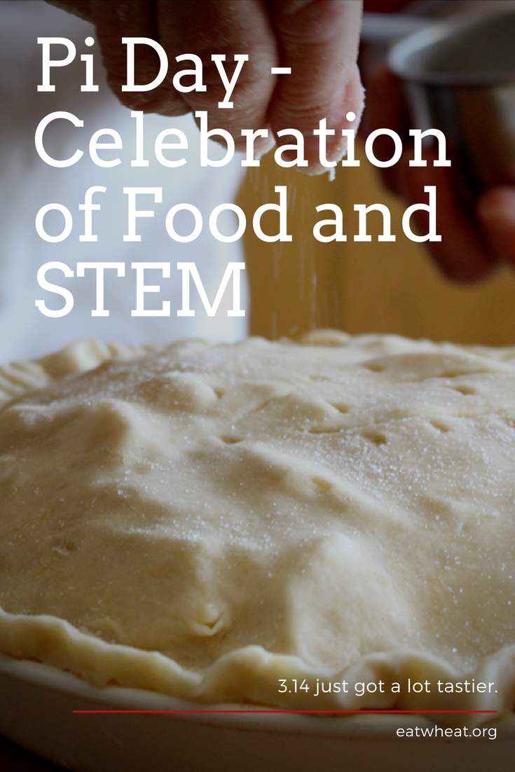 Pi Day is the perfect celebration of STEM-based learning and tasty, tasty food!