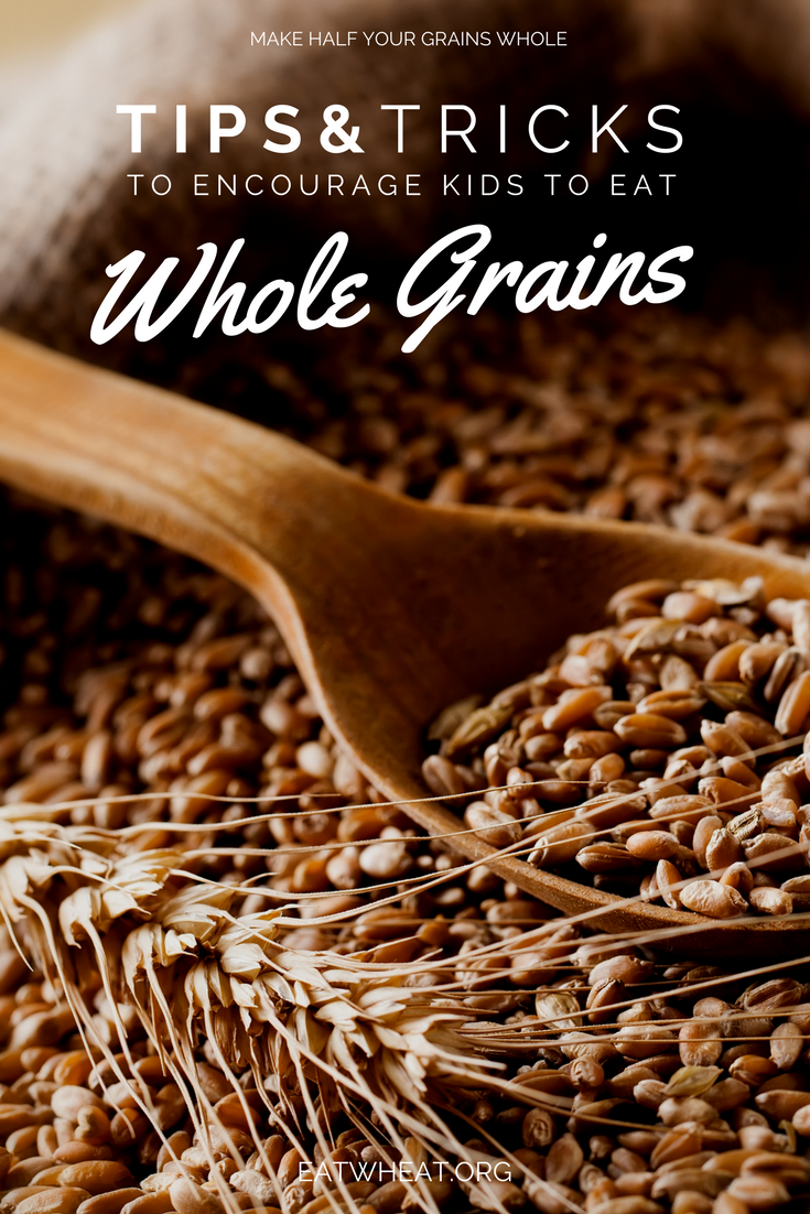 Are you wanting to introduce more whole grains into your family's meals and snacks but are worried that your child(ren) won't eat whole grains? Childhood is an important time to establish healthy eating patterns. Encouraging children to adopt healthy eating habits from a young age can have a positive impact on dietary habits later in life. Check out these tips and tricks from a Registered Dietitian!