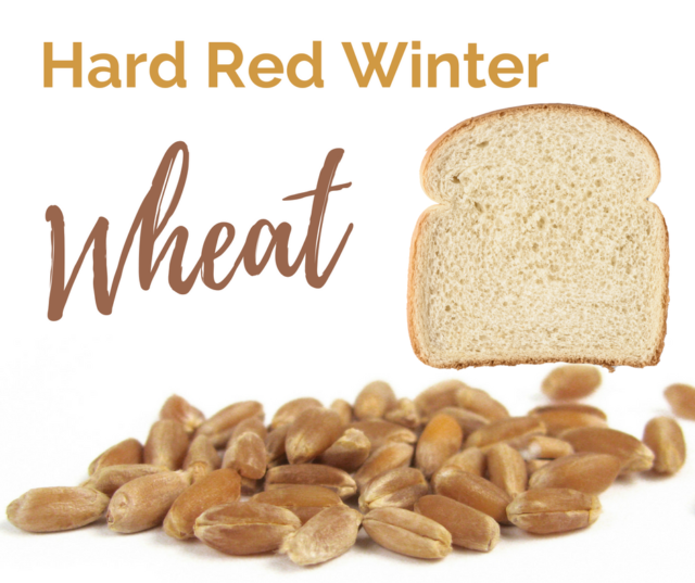 Hard Red Winter Wheat is one of the six classes of US wheat.