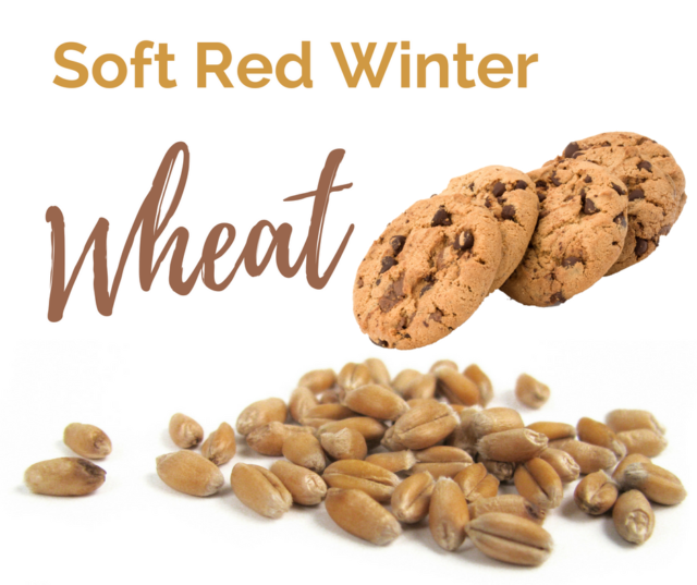 Soft Red Winter Wheat is one of the six classes of US Wheat