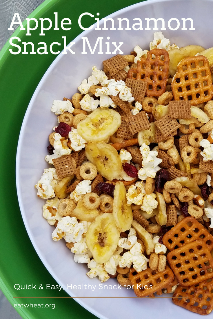 Apple Cinnamon Snack Mix is an easy fix for families on the go!