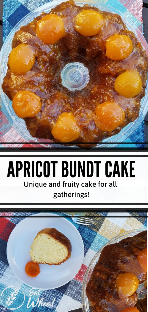 A unique cake for your next celebration. Serve this moist and fruity Apricot Bundt Cake that features apricot nectar and apricot preserves. The recipe is simple to follow and your guests' taste buds will not be disappointed. | eatwheat.org
