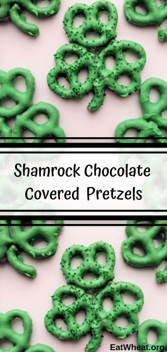 Shamrock Chocolate Covered Pretzels. Looking for a festive way to celebrate St. Patrick's Day? Kids can easily help put together the shamrocks! Serve them on their own or use them as edible cake or cupcake toppers. | EatWheat