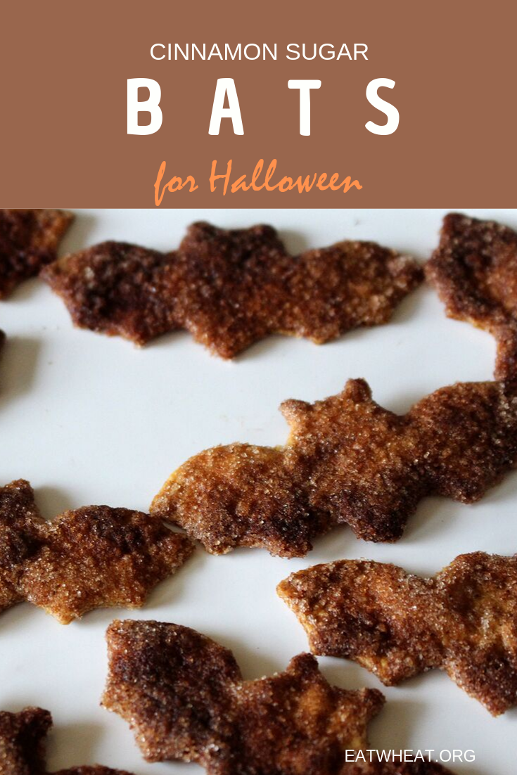 Cinnamon Sugar Bats.