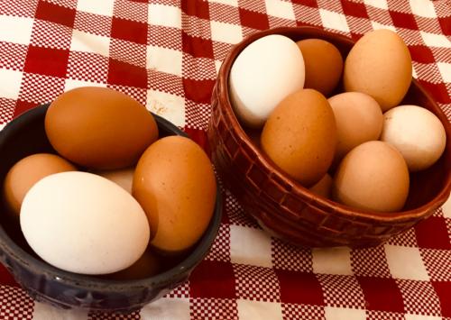Photo: Eggs from family farm hens.