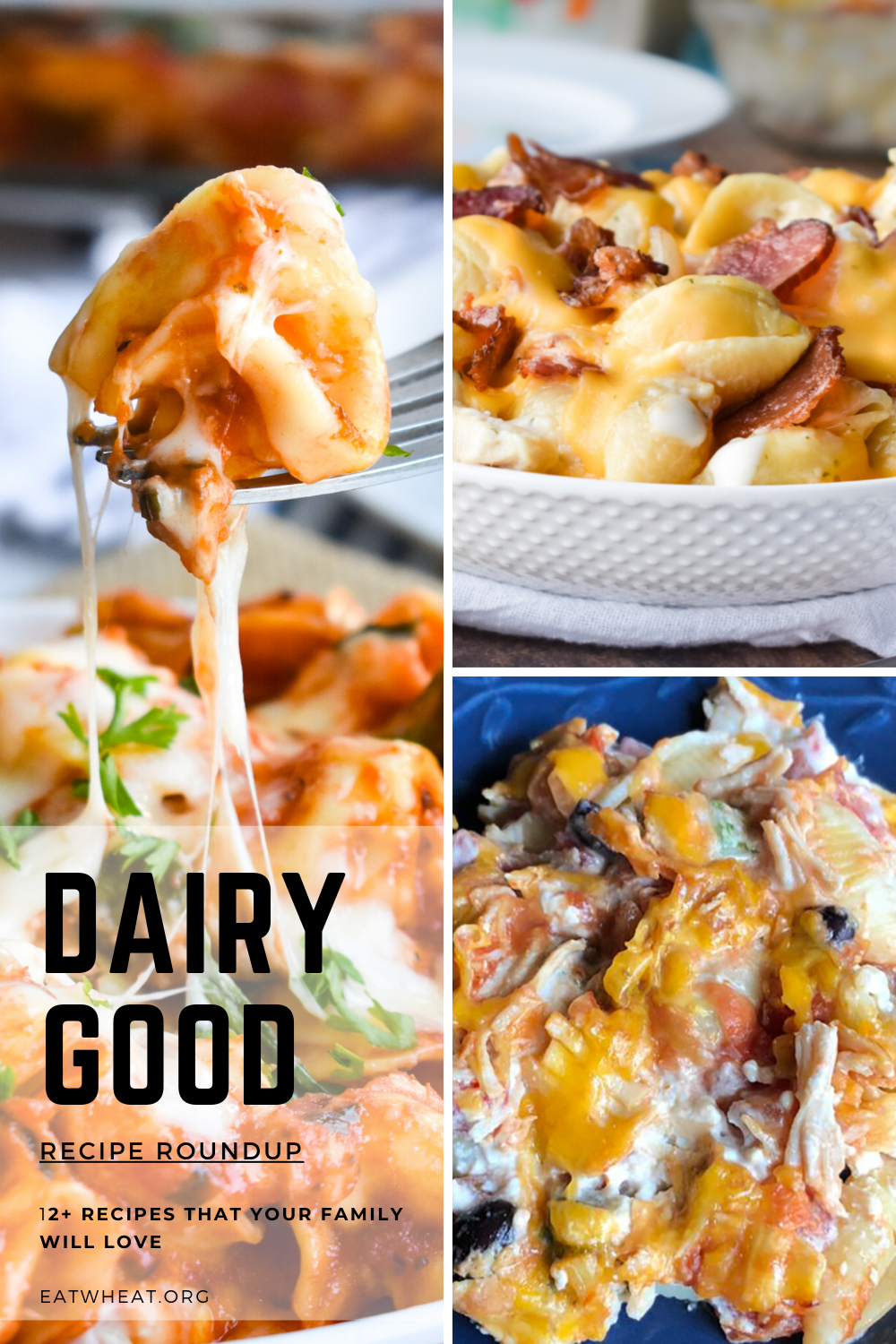 Dairy Month Recipes are here! From Cheesy Spinach Tortellini to Chicken, Bacon, Ranch Casserole, there are some amazing recipes.