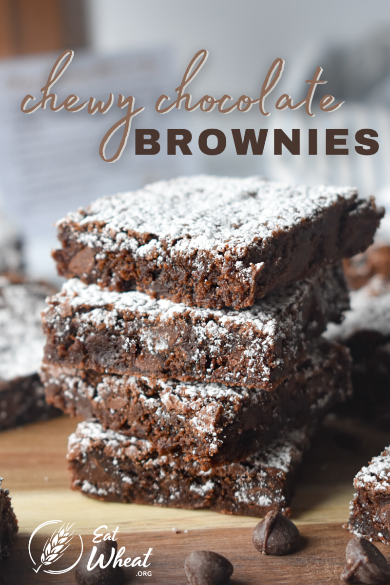 Image: Chewy Chocolate Brownies.