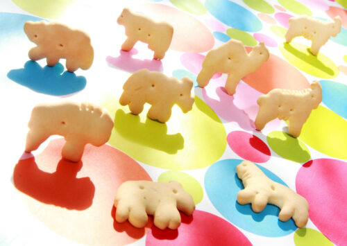 Animal crackers placed on a colorful background. Prepare for animal cracker facts!